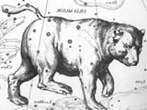 Great Bear constellation in different versions - and its movements through thousands of years